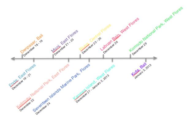 Flores Timeline