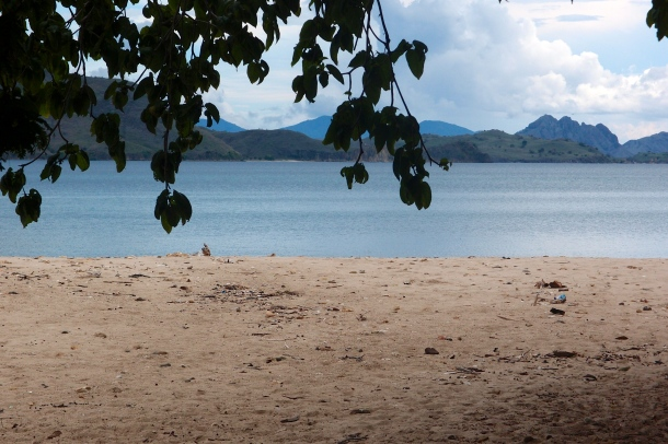 A preview of Komodo Island in  Flores.