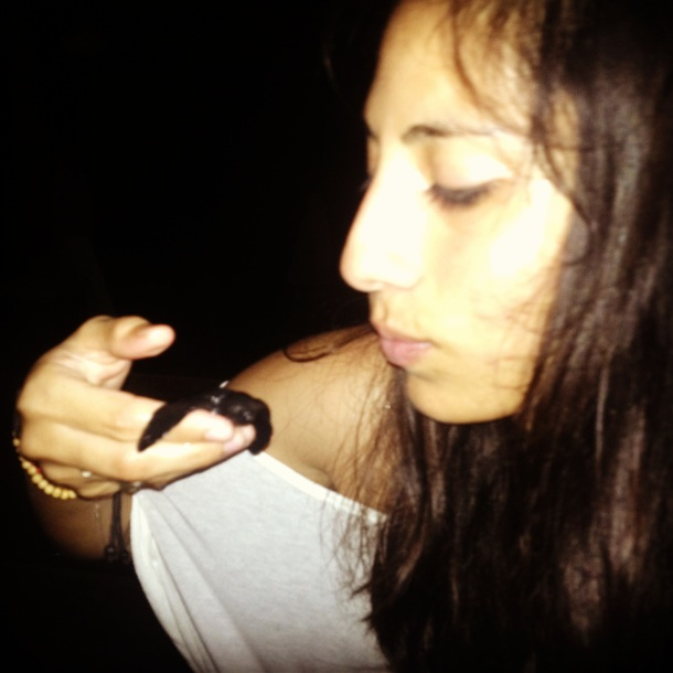 Breaking the rules slightly to kiss baby turtles.